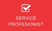 Service profesionist