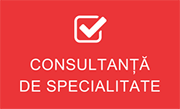 Consultanta de specialitate